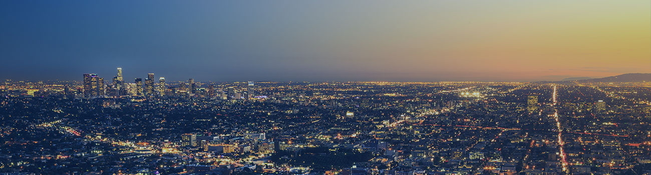 Los Angeles Skyline Cityscape